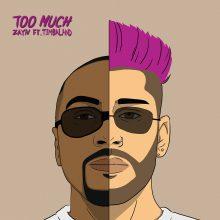 """Nowy utwór Zayna – """"Too Much"""" feat. Timbaland. Posłuchaj teraz"""