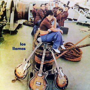 LD-3550-LOS-LLAMAS