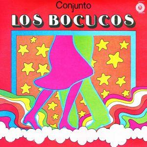 LD-0329_CONJUNTO_LOS_BOCUCOS