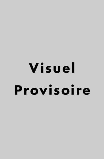 visuel provisoire