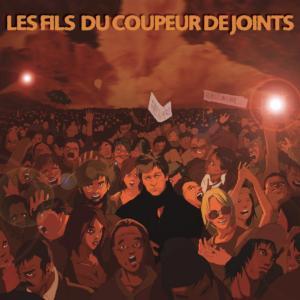 2002-Compilation-LES FILS DU COUPEUR DE JOINTS