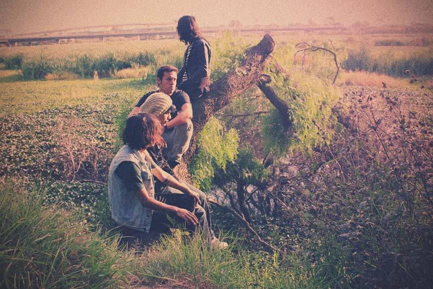australehead