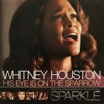 Whitney Houston - His Eye Is On The Sparrow single front cover