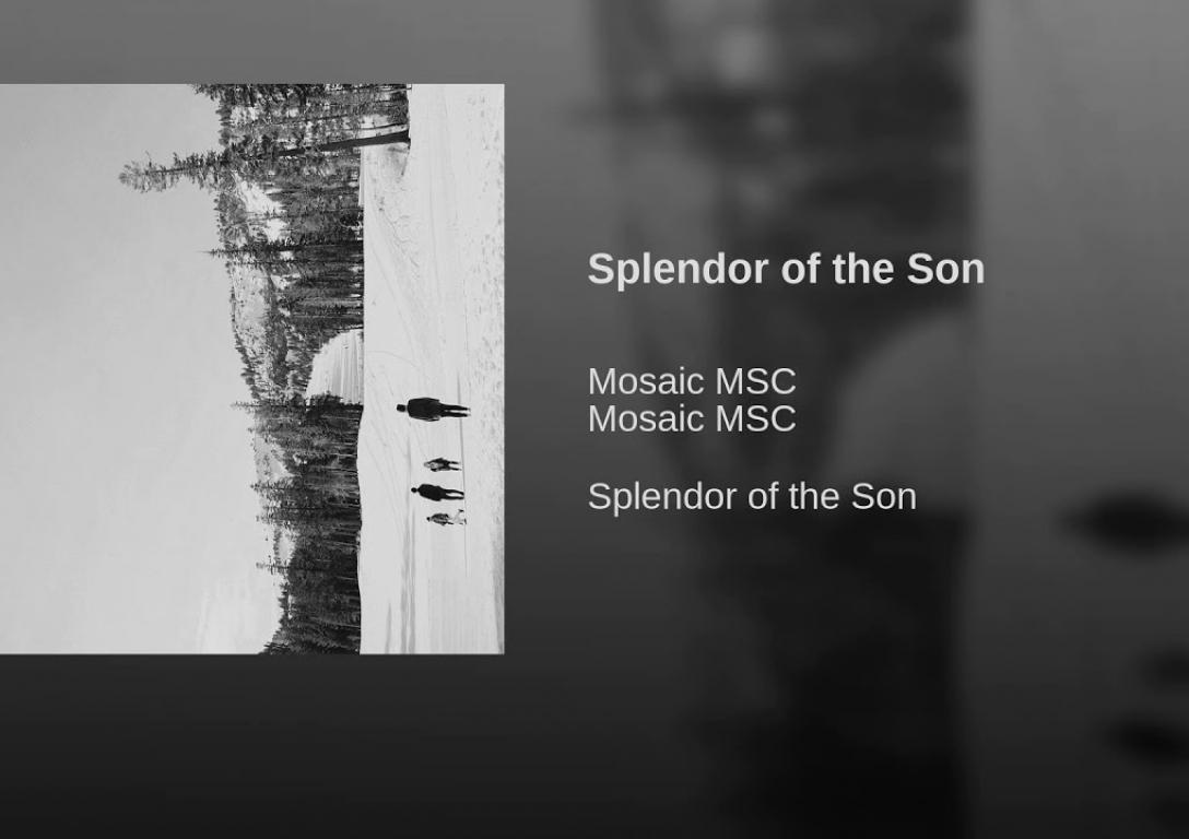 Splendor of the Son