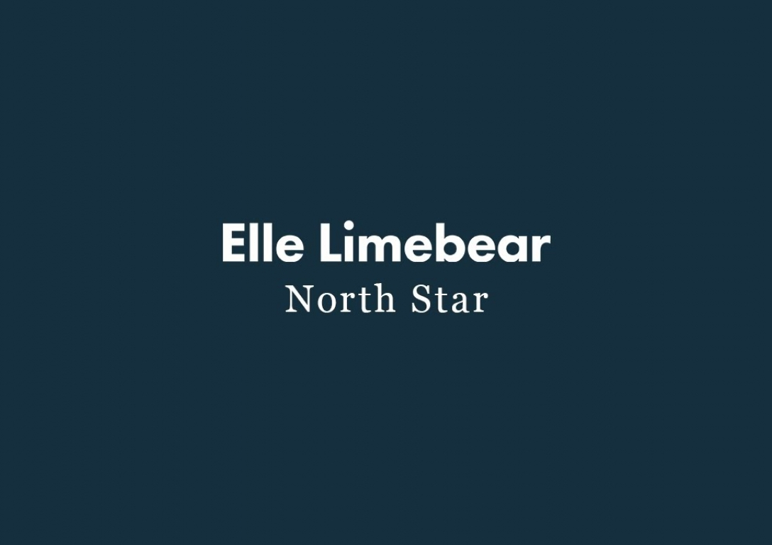 Elle Limebear: North Star (Official Audio)